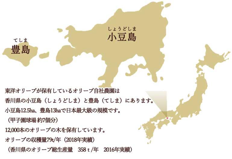 小豆島、豊島について