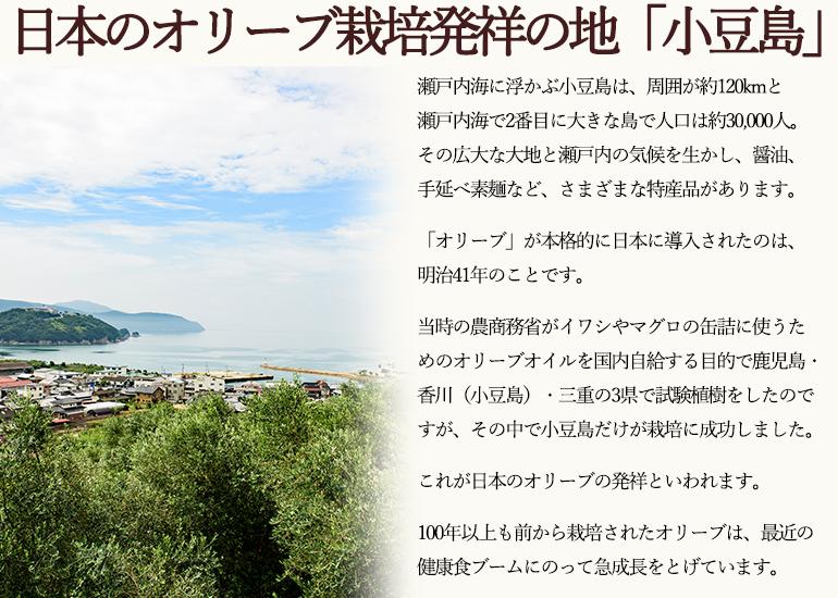日本のオリーブ栽培発祥の地「小豆島」
