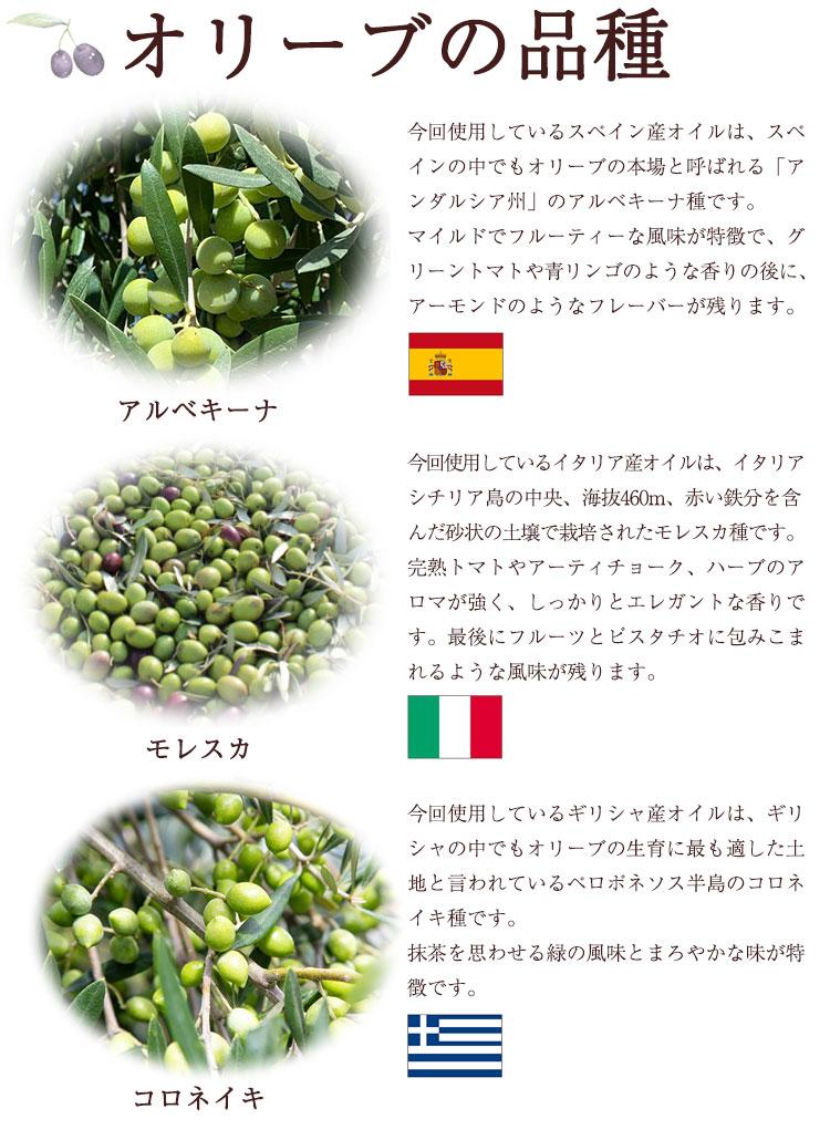オリーブの品種