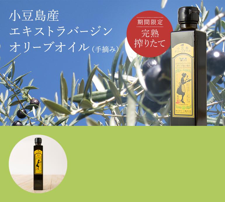 小豆島産エキストラバージンオリーブオイル(手摘み)期間限定 完熟搾りたて