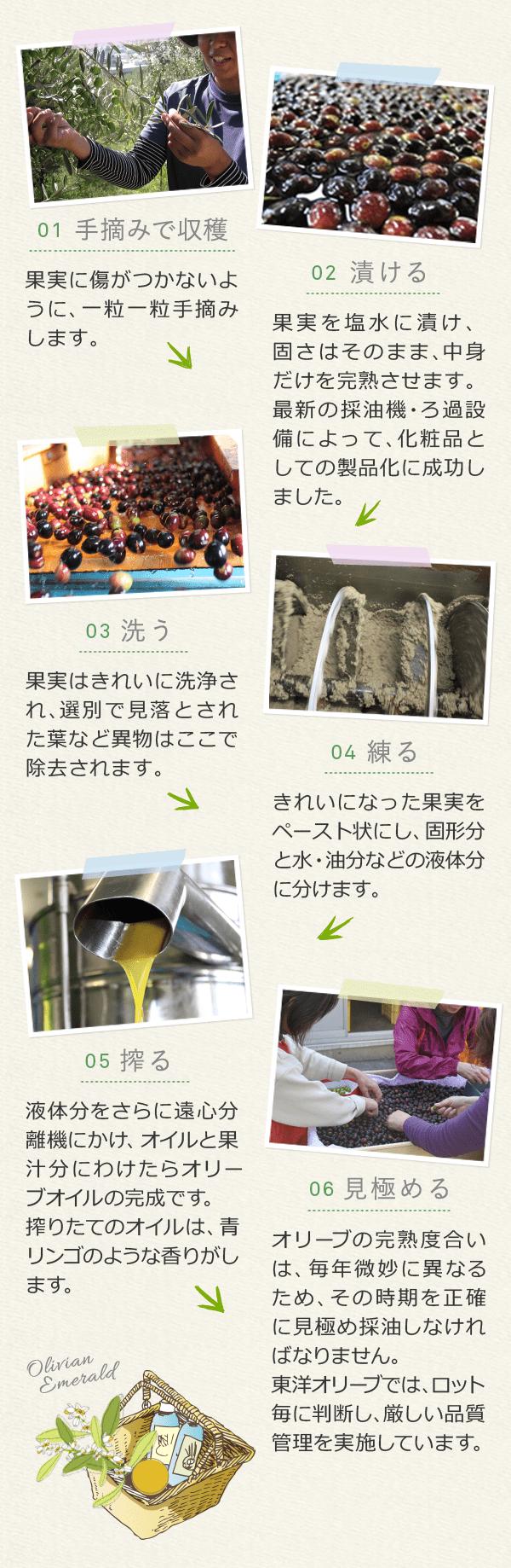 01 手積摘みで収穫 → 02 漬ける → 03 洗う → 04 練る → 05 搾る → 06 見極める